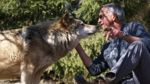 Wolves & Men